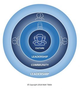 Interplay between culture and leadership